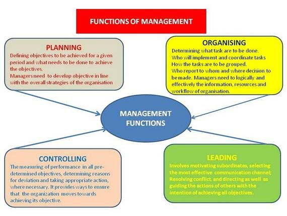 role of managers, The Role of Managers in Organizations, CX Master