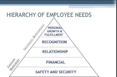 , Employee Needs and Organizational Productivity, CX Master